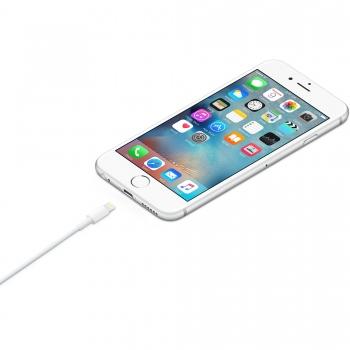 Apple ME291ZM/A lightning datový kabel 0,5m