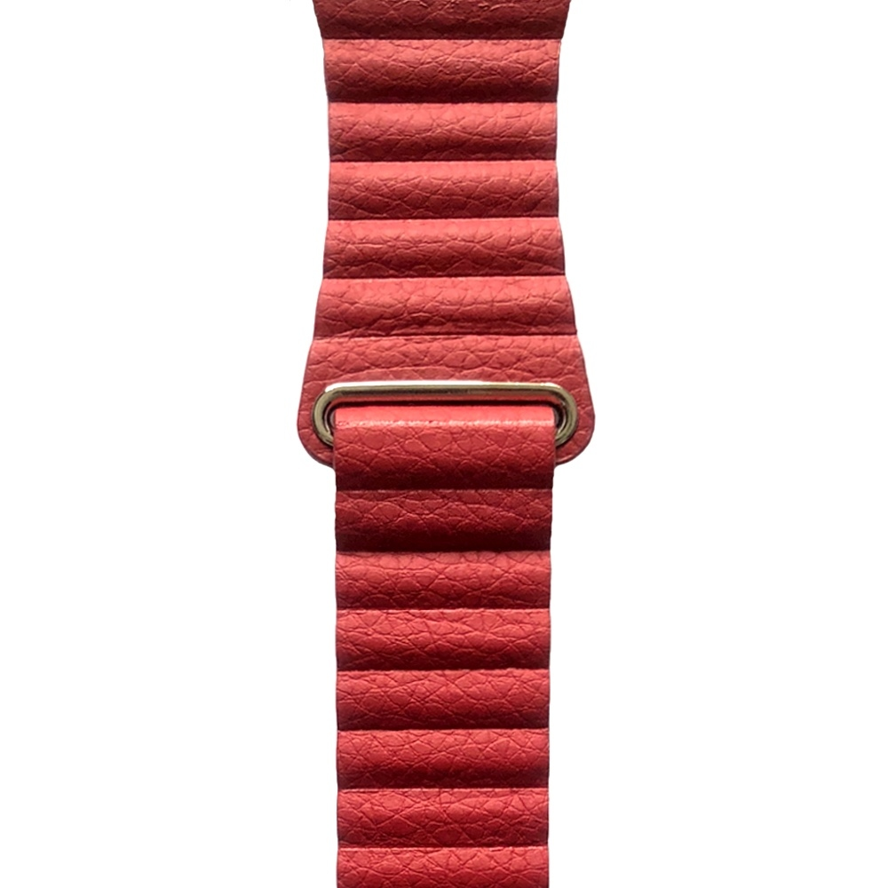 Coteetci Leather Loop for Apple Watch...
